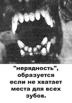 http://www.atami.ru/image/vet/vet-9_clip_image005.jpg