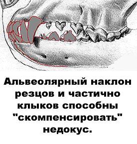 http://www.atami.ru/image/vet/vet-9_clip_image008.jpg